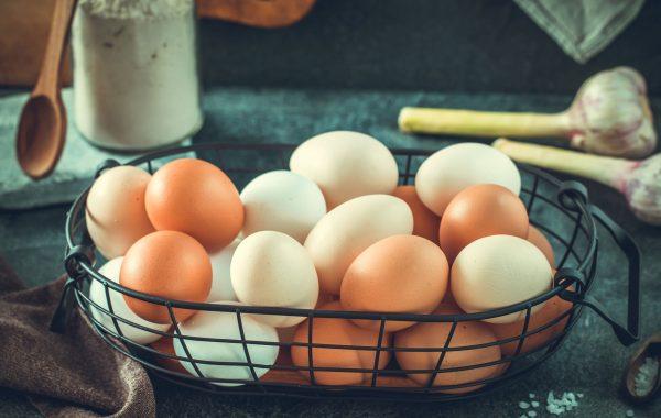 Free Range Eggs – Urban Butcher – Calgary